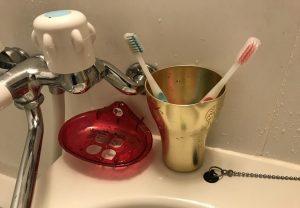 2本の歯ブラシ